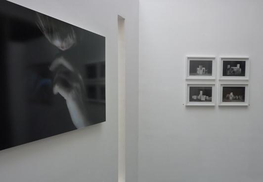 Viviane Zenner photographie, Médusa